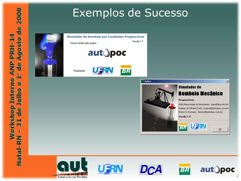 Workshop Interno ANP PRH-14 Natal-RN – 31 de Julho e 1° de Agosto de 2008 4 Exemplos de Sucesso