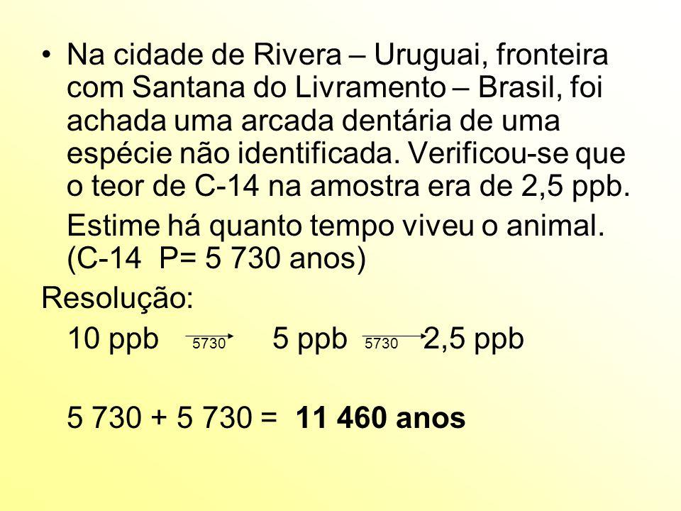 Na cidade de Rivera – Uruguai, fronteira com Santana do Livramento – Brasil, foi achada uma arcada dentária de uma espécie não identificada.