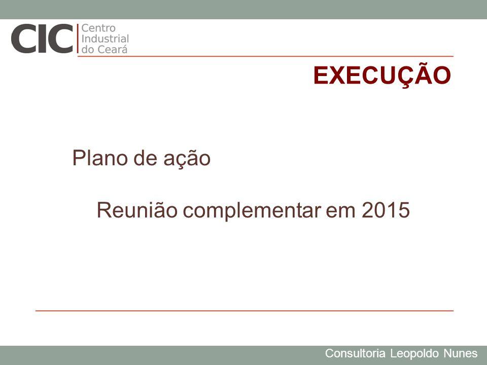 Consultoria Leopoldo Nunes EXECUÇÃO Plano de ação Reunião complementar em 2015