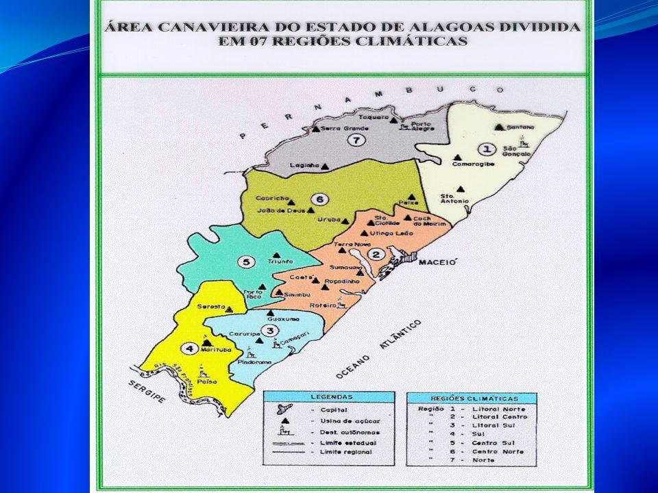 REGIÃO 01 CAMARAGIBE SANTO ANTONIO SANTA MARIA