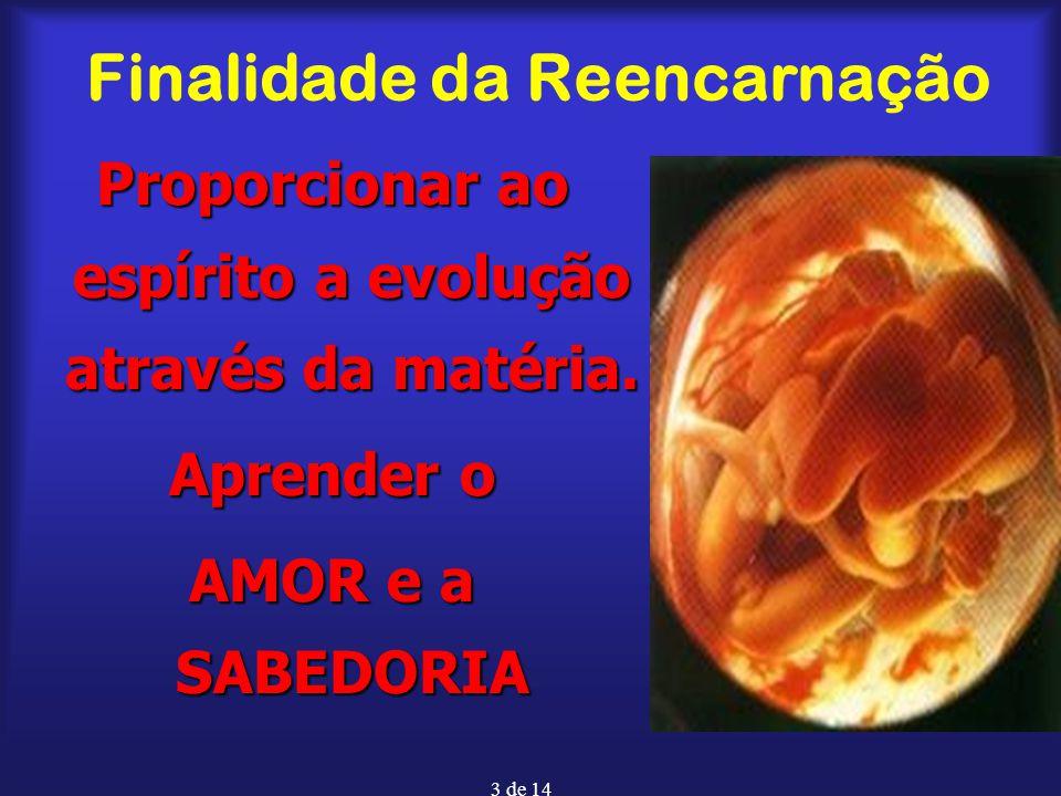 3 de 14 Finalidade da Reencarnação Proporcionar ao espírito a evolução através da matéria. Aprender o AMOR e a SABEDORIA