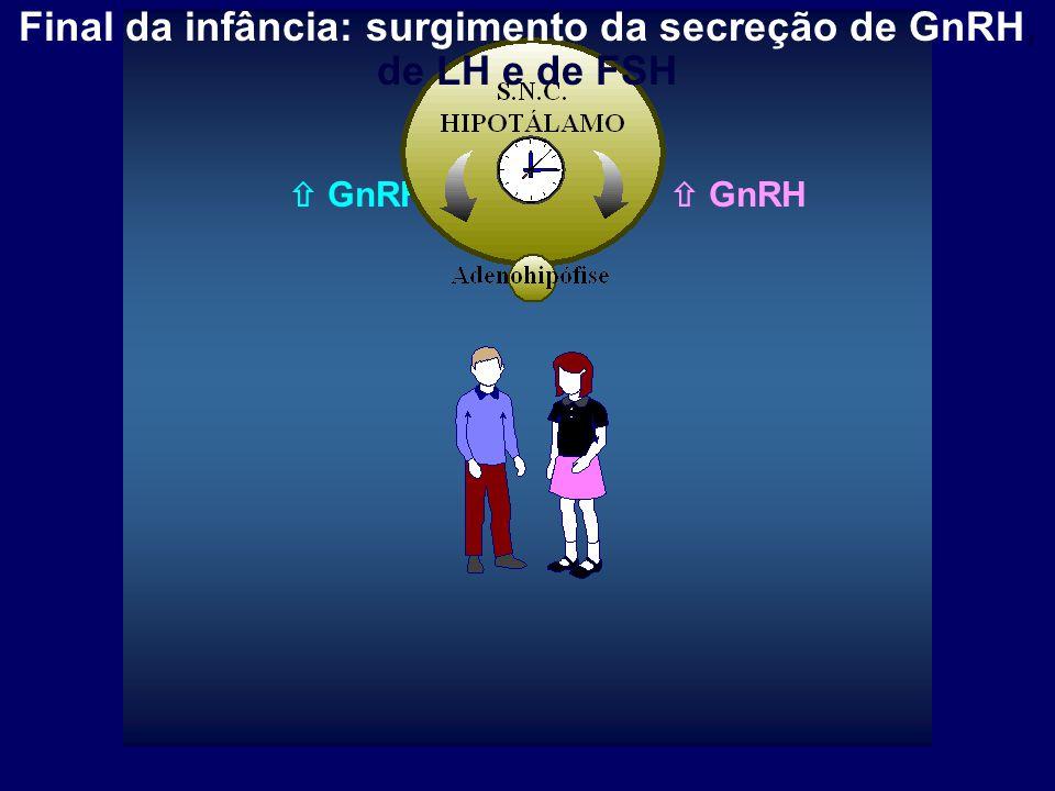  GnRH Final da infância: surgimento da secreção de GnRH, de LH e de FSH