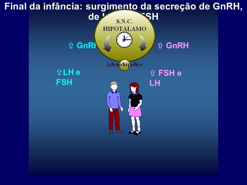 GnRH: hormônio liberador de gonadotrofinas, LHRH; Gonadotrofinas: LH (hormônio luteinizante) e FSH (hormônio folículo-estimulante)  LH e FSH  FSH e LH PUBERDADE: secreção de GnRH, LH, FSH e dos hormônios gonadais  GnRH