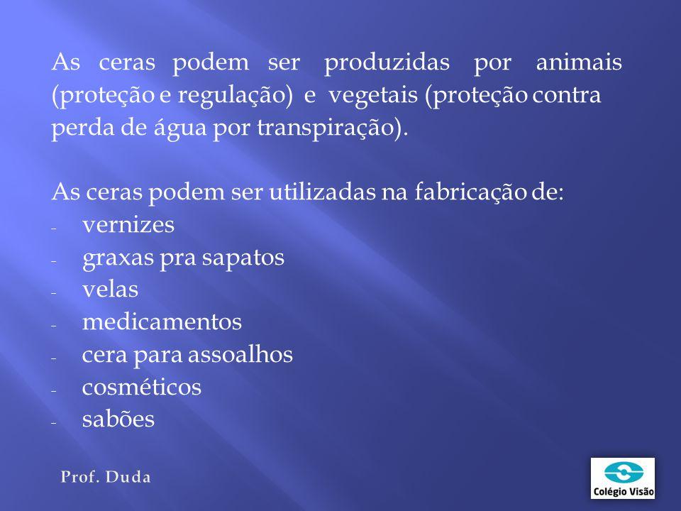 As ceras podem ser produzidas por animais (proteção e regulação) e vegetais (proteção contra perda de água por transpiração).