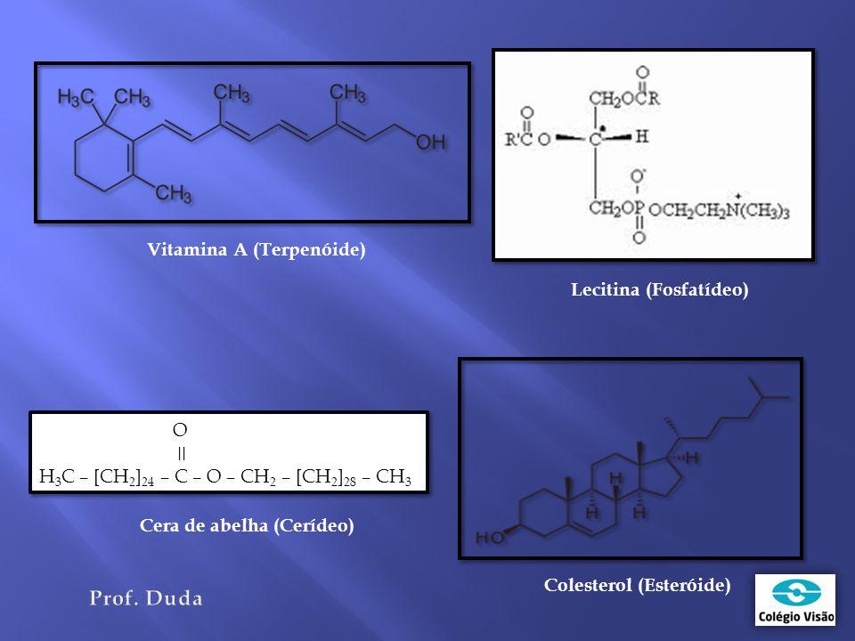 O ǀǀ H 3 C – [CH 2 ] 24 – C – O – CH 2 – [CH 2 ] 28 – CH 3 O ǀǀ H 3 C – [CH 2 ] 24 – C – O – CH 2 – [CH 2 ] 28 – CH 3 Vitamina A (Terpenóide) Lecitina (Fosfatídeo) Cera de abelha (Cerídeo) Colesterol (Esteróide)