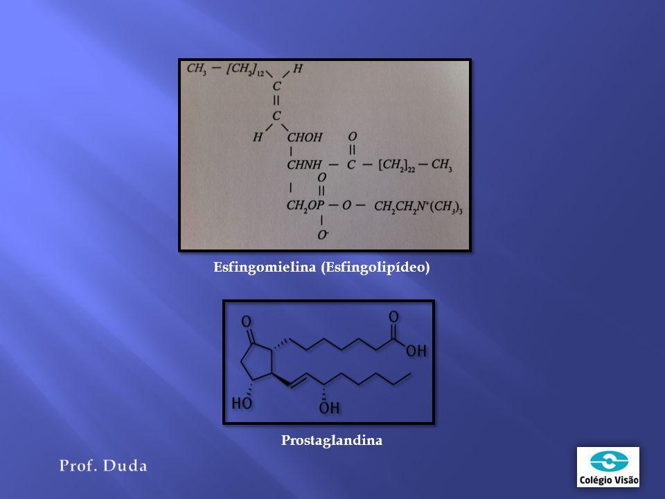 Esfingomielina (Esfingolipídeo) Prostaglandina