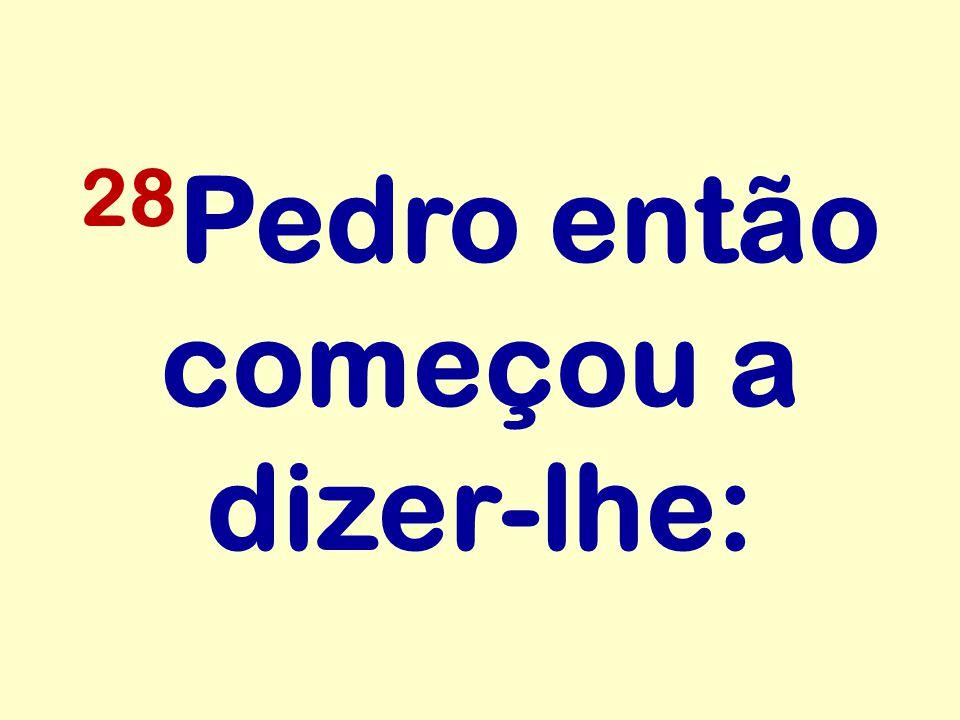 28 Pedro então começou a dizer-lhe: