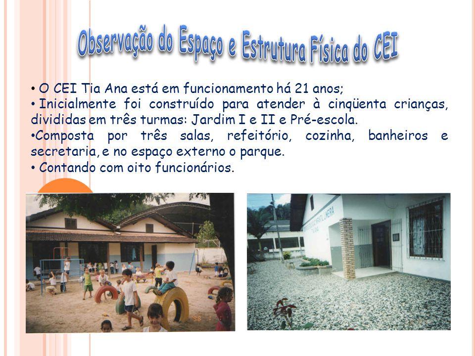 O CEI Tia Ana está em funcionamento há 21 anos; Inicialmente foi construído para atender à cinqüenta crianças, divididas em três turmas: Jardim I e II e Pré-escola.