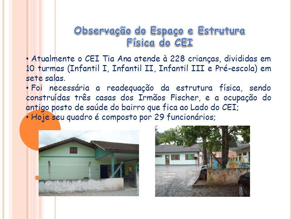 Atualmente o CEI Tia Ana atende à 228 crianças, divididas em 10 turmas (Infantil I, Infantil II, Infantil III e Pré-escola) em sete salas.