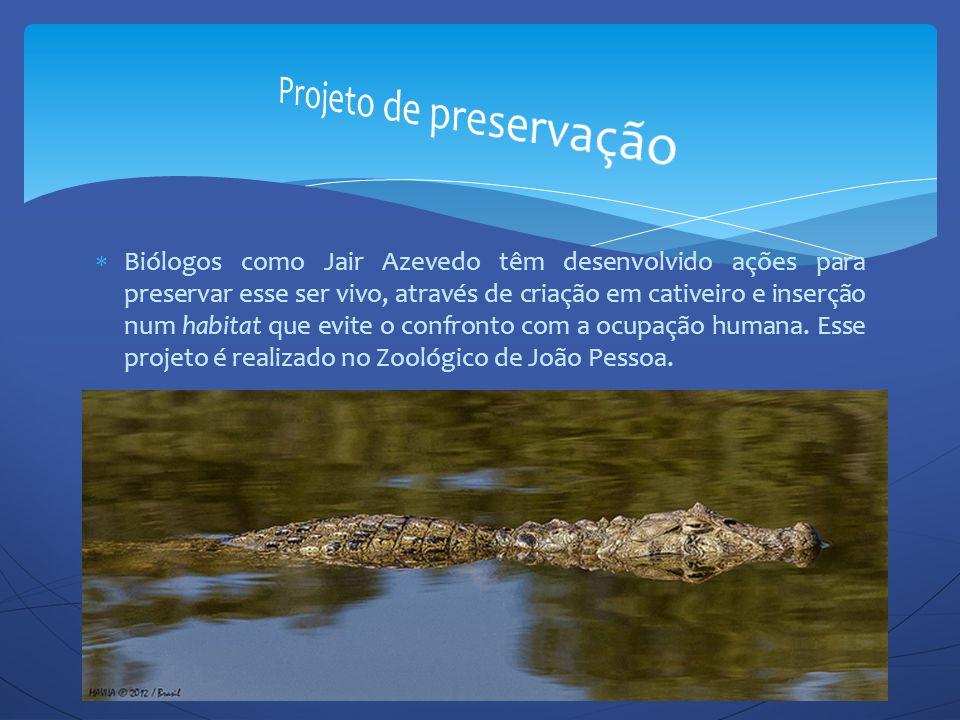  Biólogos como Jair Azevedo têm desenvolvido ações para preservar esse ser vivo, através de criação em cativeiro e inserção num habitat que evite o c