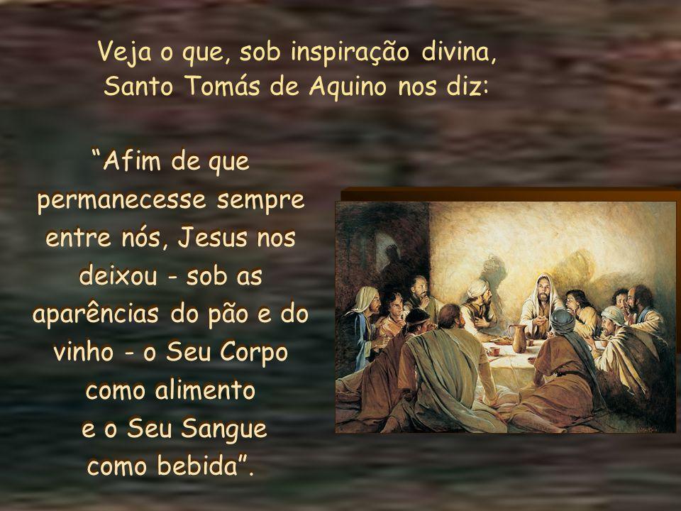 Amado Jesus, que poderemos retribuir pelo Teu incomensurável amor?...