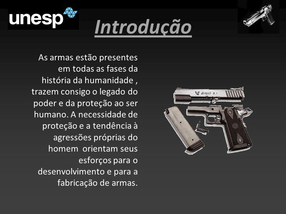 Introdução As armas estão presentes em todas as fases da história da humanidade, trazem consigo o legado do poder e da proteção ao ser humano.