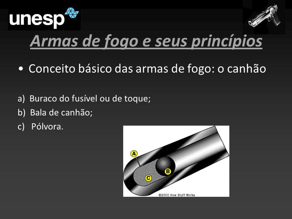 Armas de fogo e seus princípios Conceito básico das armas de fogo: o canhão a) Buraco do fusível ou de toque; b) Bala de canhão; c) Pólvora.