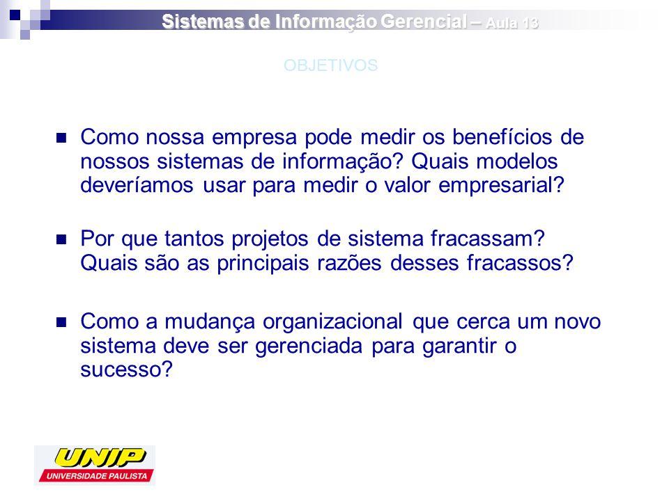 Há desafios especiais na implementação de sistemas internacionais de informação.
