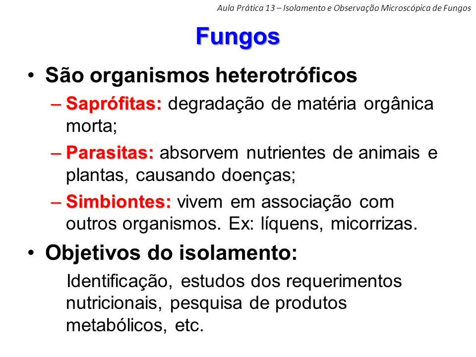 Fungos São organismos heterotróficos –Saprófitas: –Saprófitas: degradação de matéria orgânica morta; –Parasitas: –Parasitas: absorvem nutrientes de animais e plantas, causando doenças; –Simbiontes: –Simbiontes: vivem em associação com outros organismos.