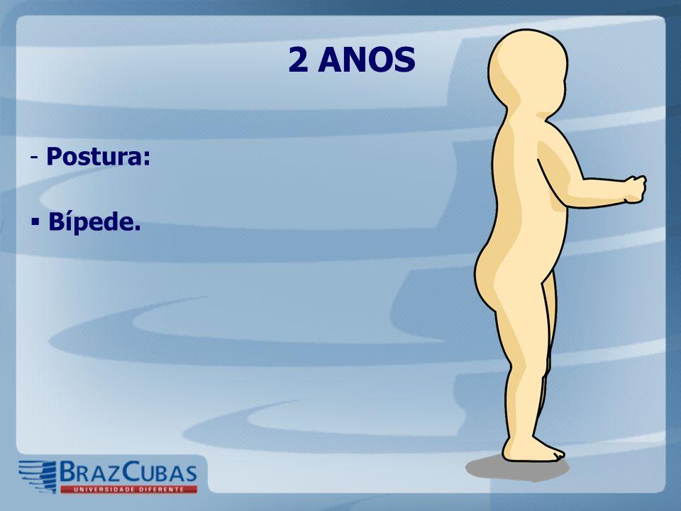 2 ANOS - Postura:  Bípede.
