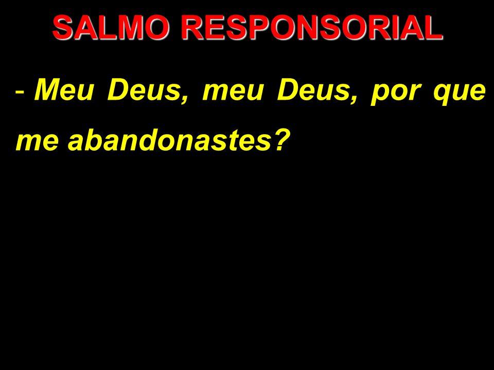 SALMO RESPONSORIAL - Meu Deus, meu Deus, por que me abandonastes?