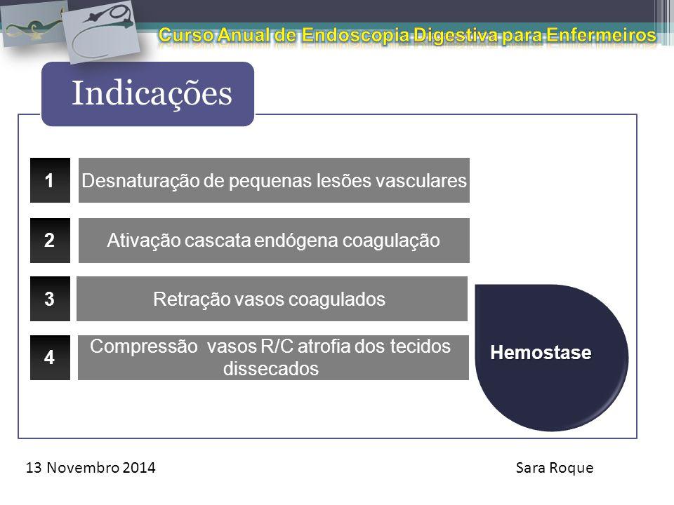 13 Novembro 2014Sara Roque Indicações Hemostase Retração vasos coagulados 1 2 3 Desnaturação de pequenas lesões vasculares Ativação cascata endógena c