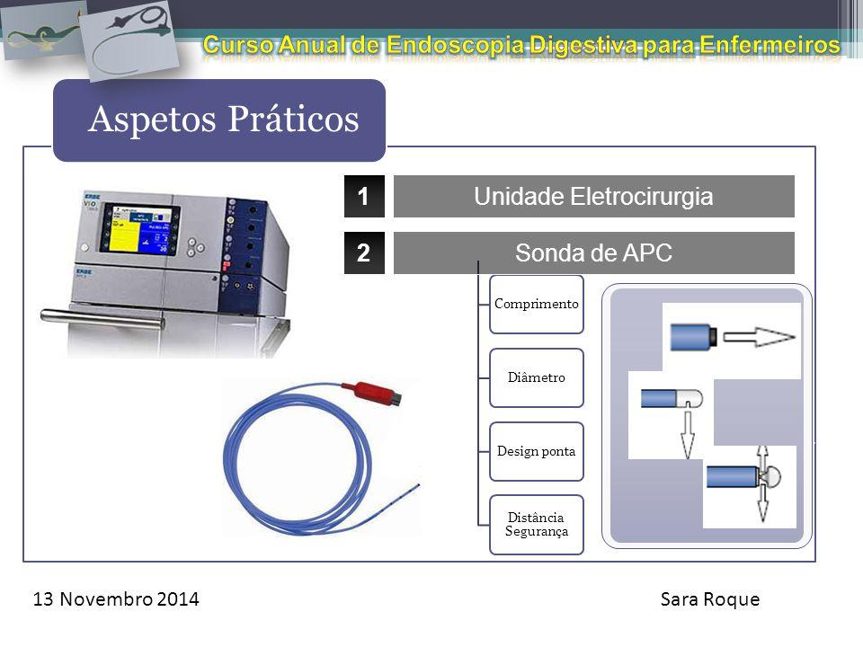 13 Novembro 2014Sara Roque Aspetos Práticos Aquecimento da endógena do tecido alvo durante a aplicação de corrente elétrica. ComprimentoDiâmetroDesign