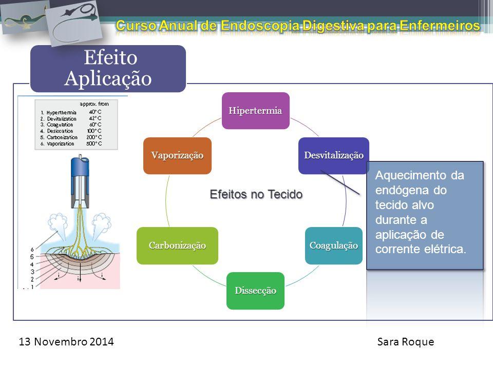 13 Novembro 2014Sara Roque Efeito Aplicação Hipertermia Desvitalização Coagulação Dissecção Carbonização Vaporização Efeitos no Tecido Aquecimento da