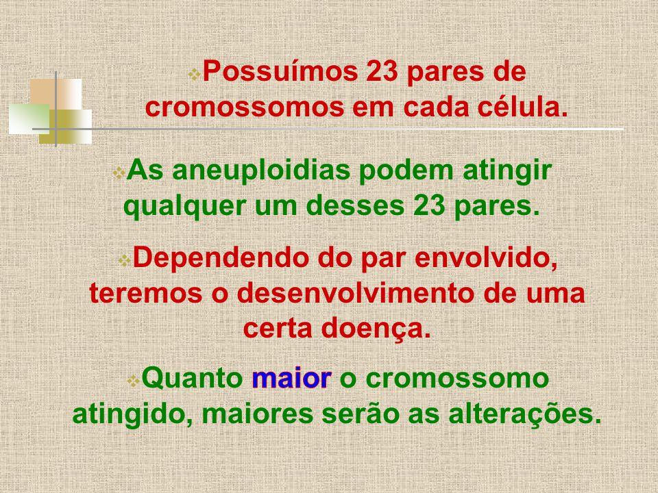  Possuímos 23 pares de cromossomos em cada célula.  As aneuploidias podem atingir qualquer um desses 23 pares.  Dependendo do par envolvido, teremo