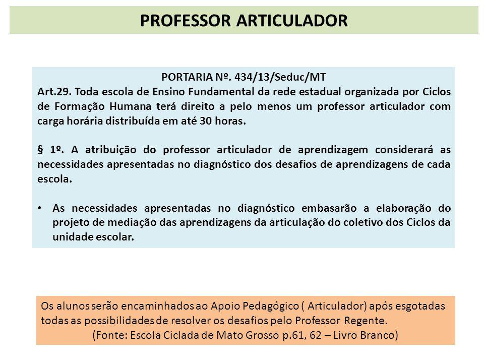 PROFESSOR ARTICULADOR PORTARIA Nº. 434/13/Seduc/MT Art.29. Toda escola de Ensino Fundamental da rede estadual organizada por Ciclos de Formação Humana
