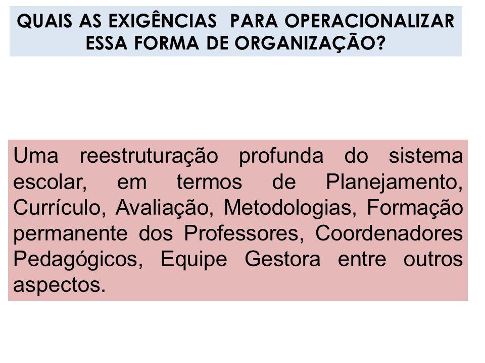 QUAIS AS EXIGÊNCIAS PARA OPERACIONALIZAR ESSA FORMA DE ORGANIZAÇÃO? Uma reestruturação profunda do sistema escolar, em termos de Planejamento, Currícu
