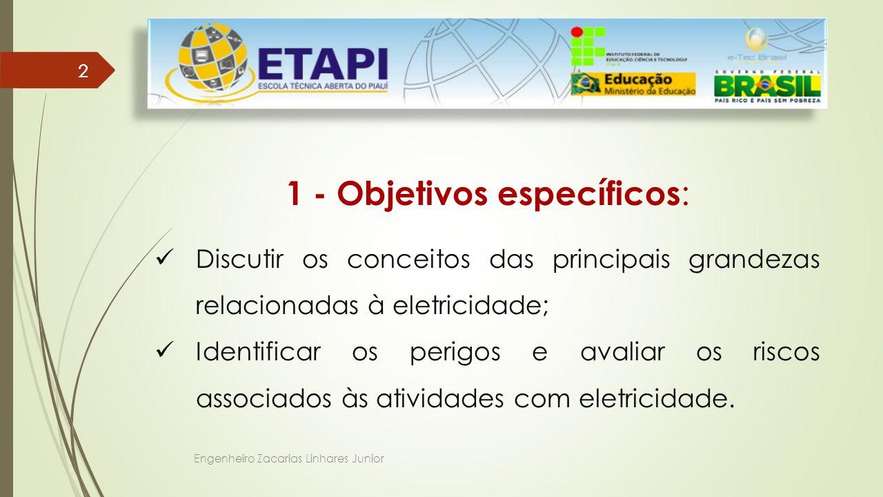 Engenheiro Zacarias Linhares Junior 22 1 - Objetivos específicos : Discutir os conceitos das principais grandezas relacionadas à eletricidade; Identificar os perigos e avaliar os riscos associados às atividades com eletricidade.