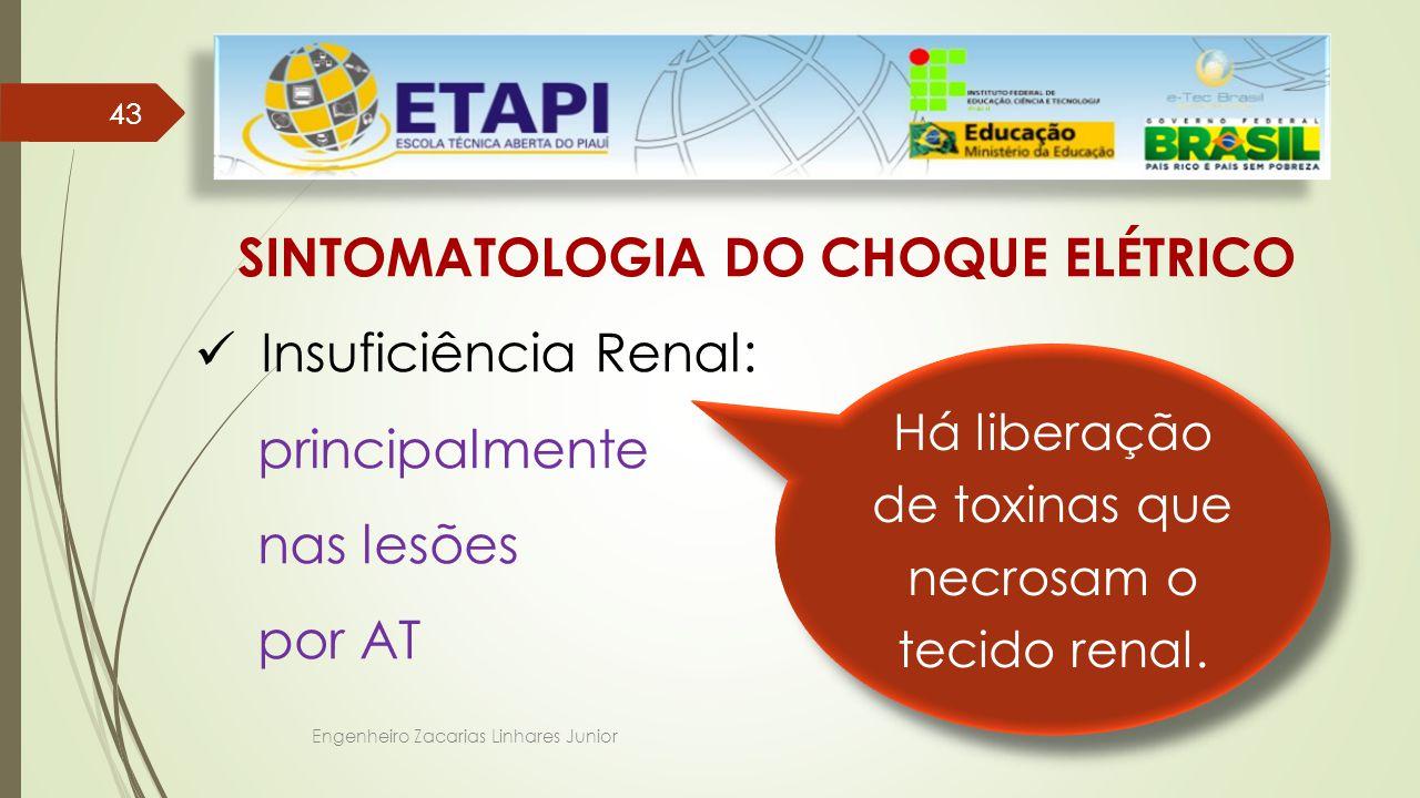 Engenheiro Zacarias Linhares Junior 43 SINTOMATOLOGIA DO CHOQUE ELÉTRICO Insuficiência Renal: principalmente nas lesões por AT Por haver grandes destruições musculares.