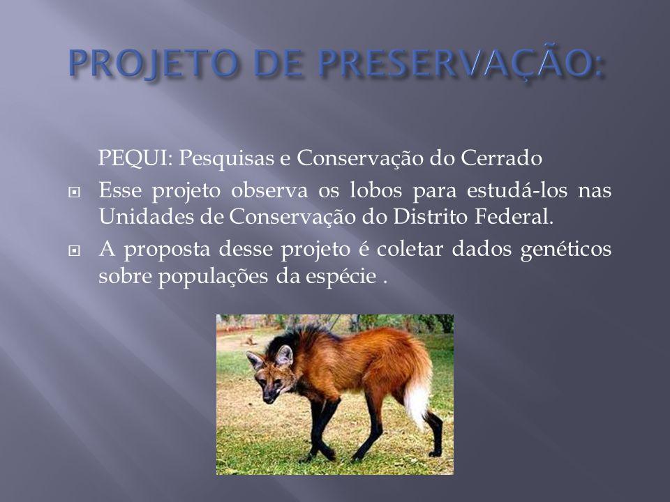 PEQUI: Pesquisas e Conservação do Cerrado  Esse projeto observa os lobos para estudá-los nas Unidades de Conservação do Distrito Federal.  A propost