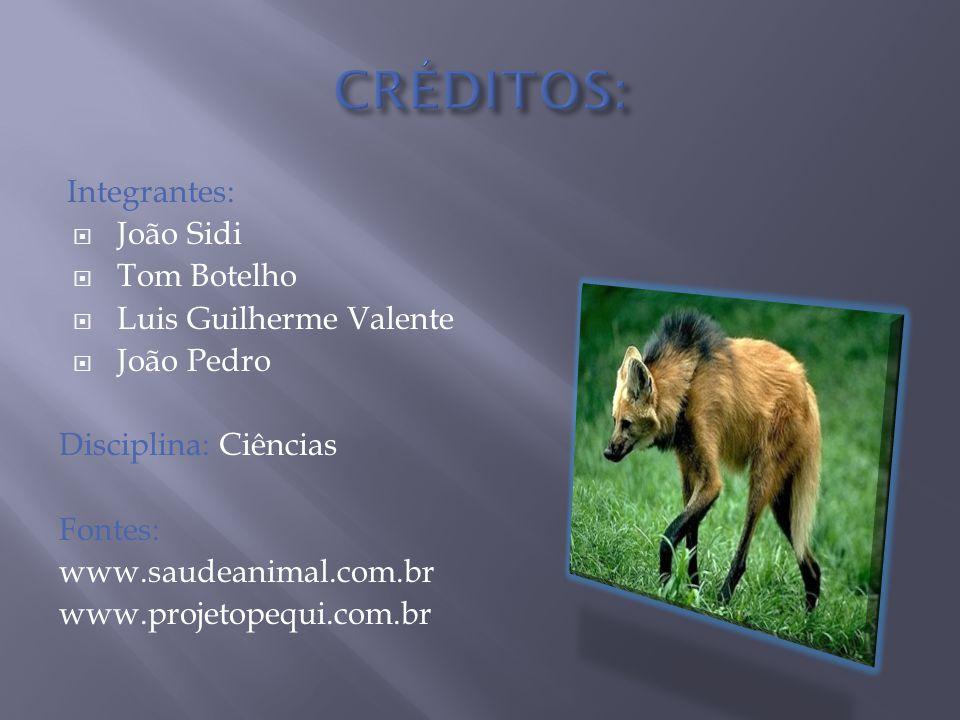 Integrantes:  João Sidi  Tom Botelho  Luis Guilherme Valente  João Pedro Disciplina: Ciências Fontes: www.saudeanimal.com.br www.projetopequi.com.br