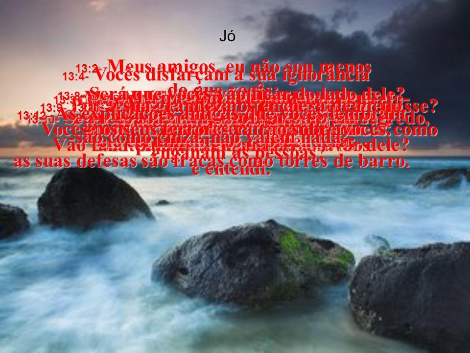 Jó 13:1- Eu vi tudo isso com os meus próprios olhos; escutei tudo com os meus ouvidos e entendi.