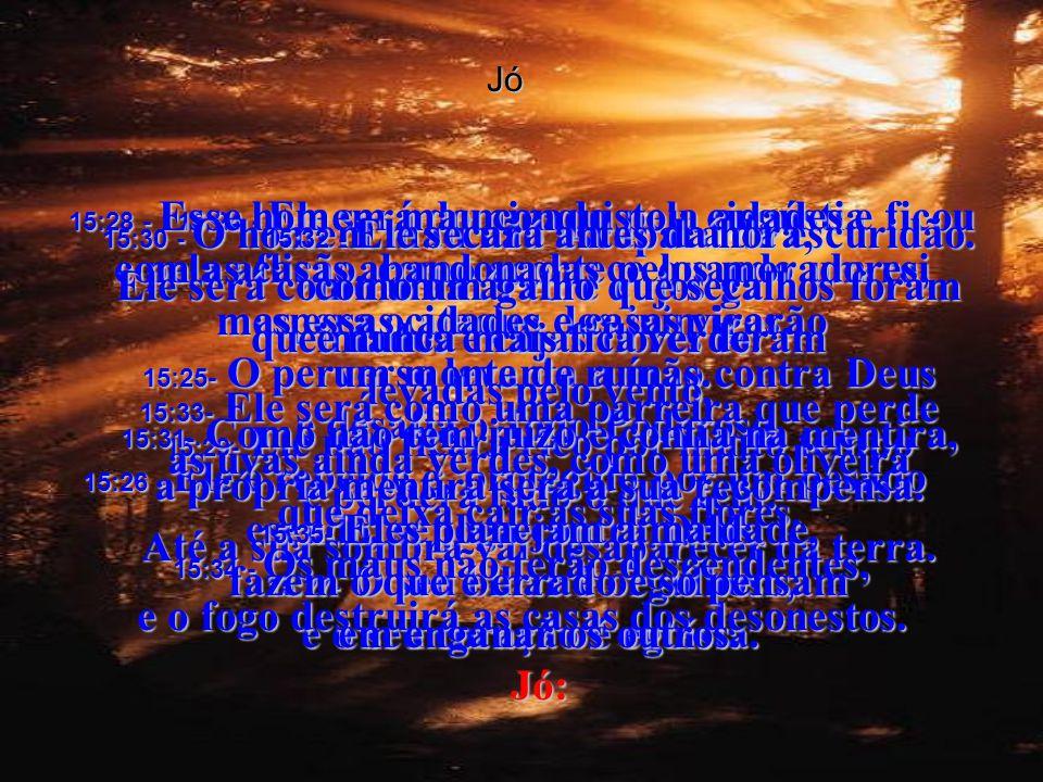 Jó 15:1e2 - Jó, um sábio não responde com palavras ocas, não fica inchado com opiniões que não valem nada. 15:3- Um sábio não falaria palavras inúteis