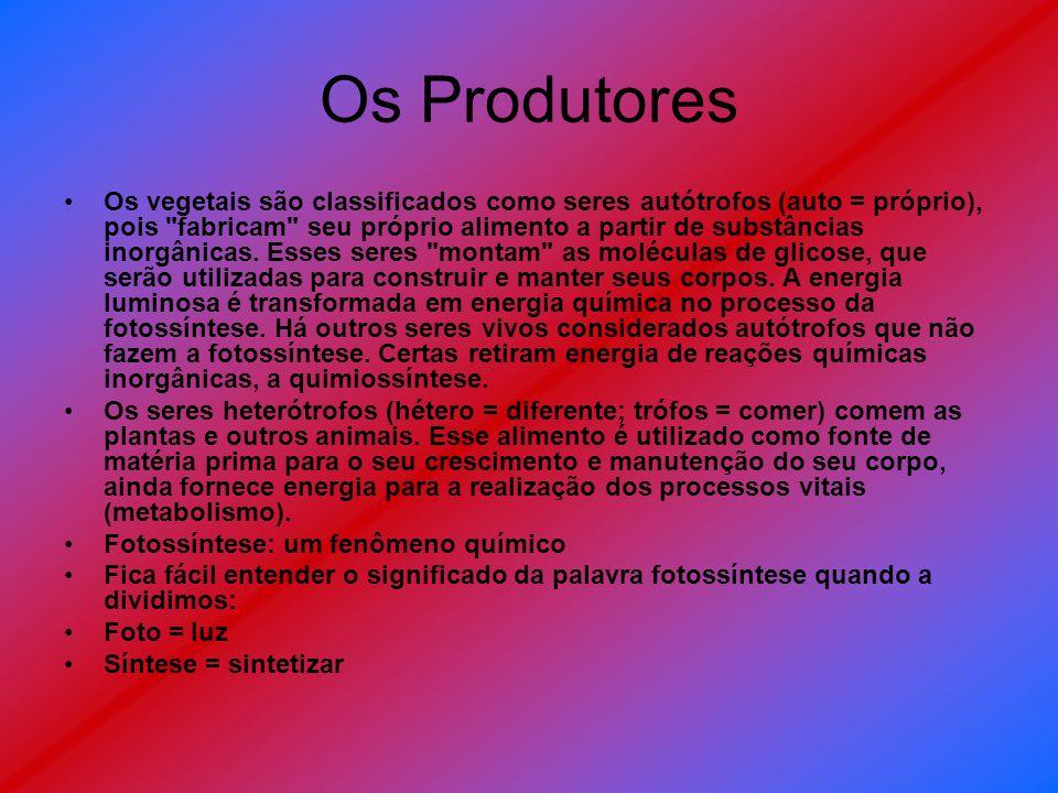 Os Produtores Os vegetais são classificados como seres autótrofos (auto = próprio), pois