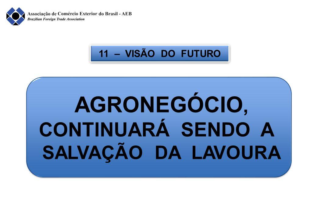 11 – VISÃO DO FUTURO AGRONEGÓCIO, CONTINUARÁ SENDO A SALVAÇÃO DA LAVOURA AGRONEGÓCIO, CONTINUARÁ SENDO A SALVAÇÃO DA LAVOURA