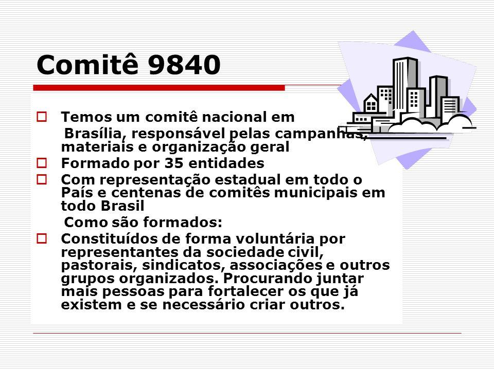 Comitê 9840  Temos um comitê nacional em Brasília, responsável pelas campanhas, materiais e organização geral  Formado por 35 entidades  Com repres