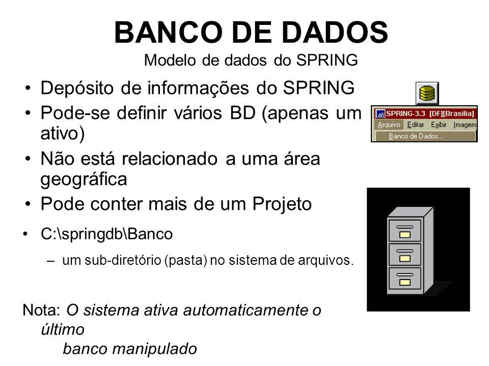 BANCO DE DADOS Modelo de dados do SPRING Depósito de informações do SPRING Pode-se definir vários BD (apenas um ativo) Não está relacionado a uma área geográfica Pode conter mais de um Projeto C:\springdb\Banco –um sub-diretório (pasta) no sistema de arquivos.