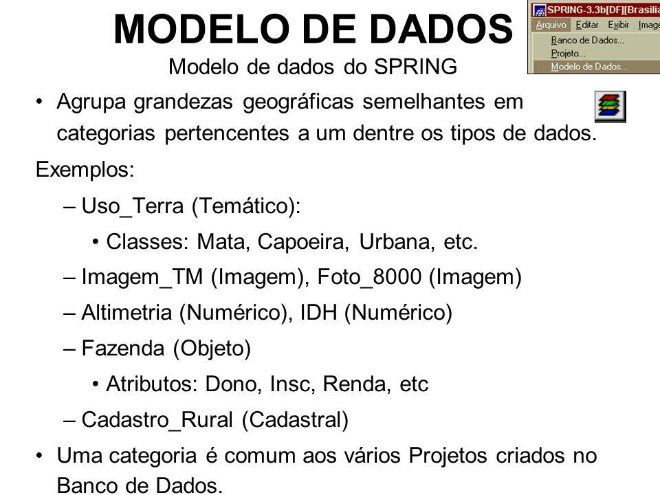 MODELO DE DADOS Modelo de dados do SPRING Agrupa grandezas geográficas semelhantes em categorias pertencentes a um dentre os tipos de dados.
