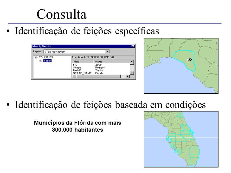 Consulta Identificação de feições específicas Identificação de feições baseada em condições Municípios da Flórida com mais 300,000 habitantes