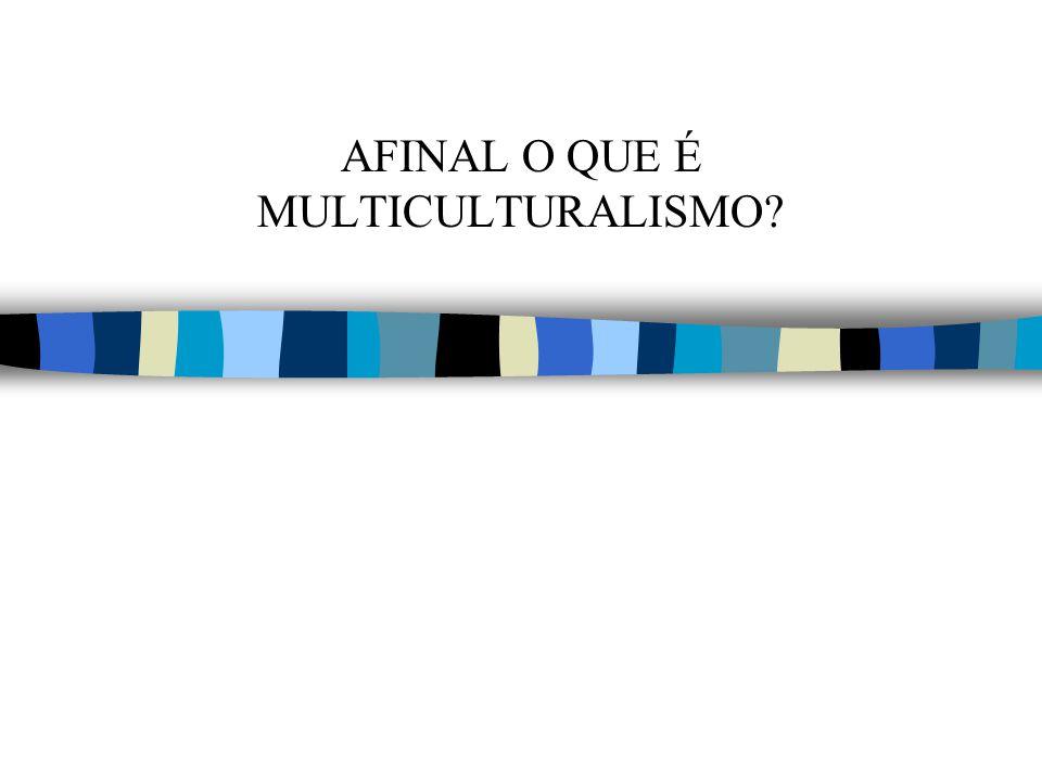 AFINAL O QUE É MULTICULTURALISMO?