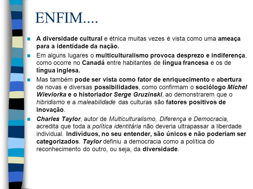 ENFIM.... A diversidade cultural e étnica muitas vezes é vista como uma ameaça para a identidade da nação. Em alguns lugares o multiculturalismo provo