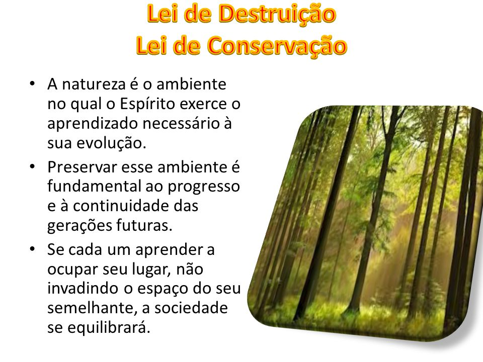 A natureza é o ambiente no qual o Espírito exerce o aprendizado necessário à sua evolução. Preservar esse ambiente é fundamental ao progresso e