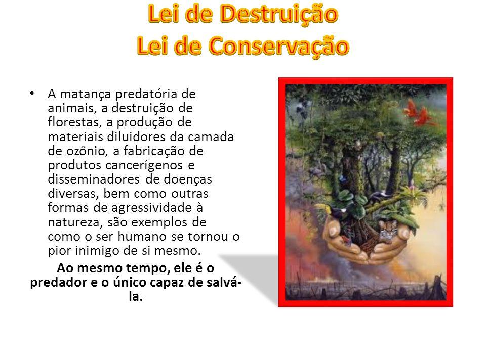 A matança predatória de animais, a destruição de florestas, a produção de materiais diluidores da camada de ozônio, a fabricação de produtos