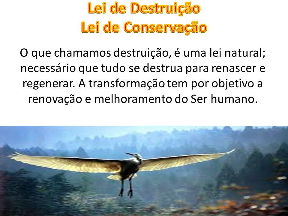 O que chamamos destruição, é uma lei natural; necessário que tudo se destrua para renascer e regenerar. A transformação tem por objetivo a renovação e