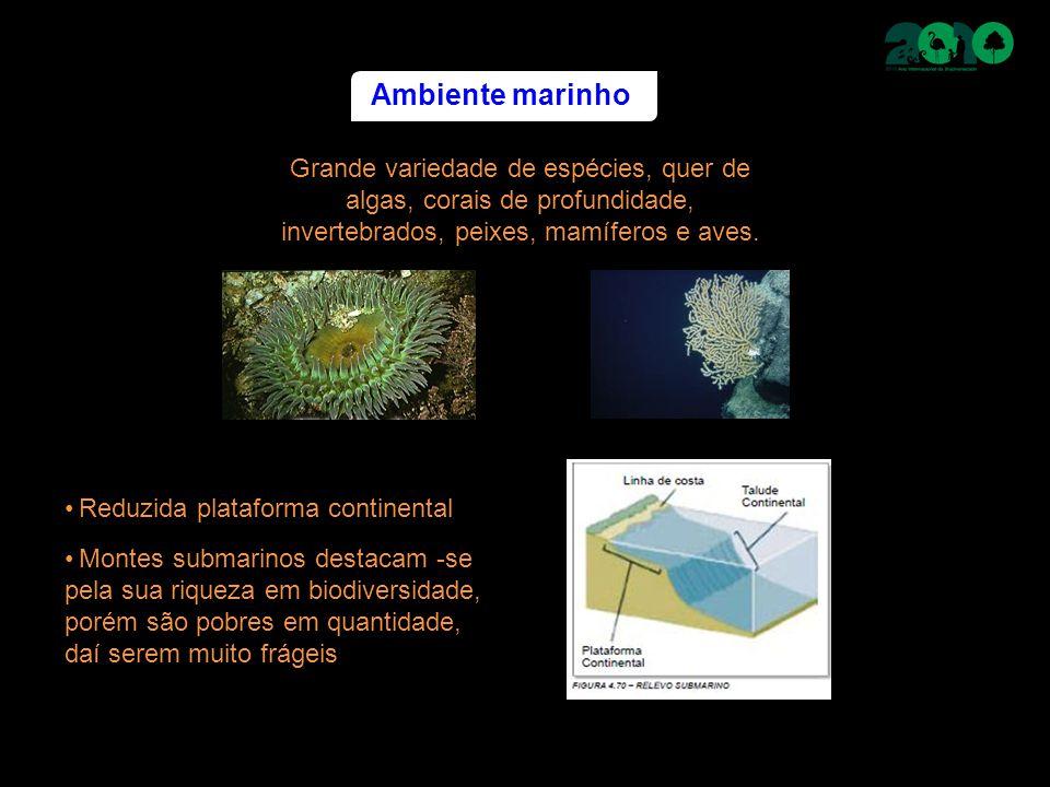 Ambiente marinho Grande variedade de espécies, quer de algas, corais de profundidade, invertebrados, peixes, mamíferos e aves. Montes submarinos desta