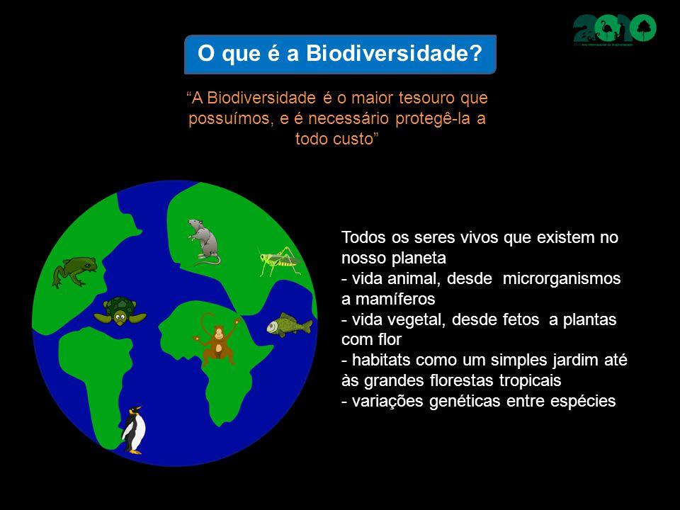 """O que é a Biodiversidade? """"A Biodiversidade é o maior tesouro que possuímos, e é necessário protegê-la a todo custo"""" Todos os seres vivos que existem"""
