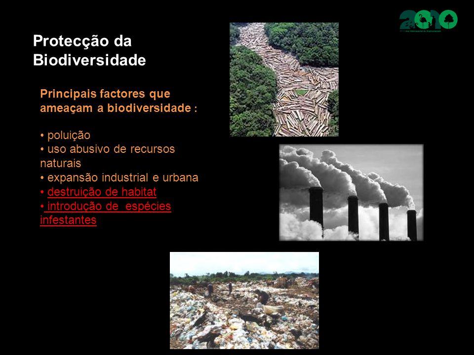 Protecção da Biodiversidade Principais factores que ameaçam a biodiversidade : poluição uso abusivo de recursos naturais expansão industrial e urbana destruição de habitat introdução de espécies infestantes