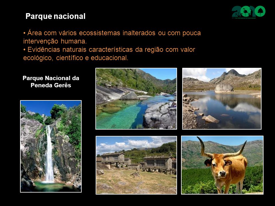 Parque nacional Área com vários ecossistemas inalterados ou com pouca intervenção humana. Evidências naturais características da região com valor ecol