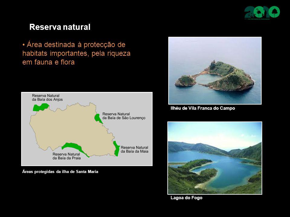 Reserva natural Área destinada à protecção de habitats importantes, pela riqueza em fauna e flora Ilhéu de Vila Franca do Campo Lagoa do Fogo Áreas pr