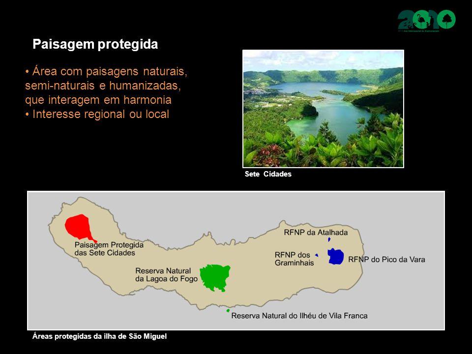 Paisagem protegida Área com paisagens naturais, semi-naturais e humanizadas, que interagem em harmonia Interesse regional ou local Sete Cidades Áreas protegidas da ilha de São Miguel
